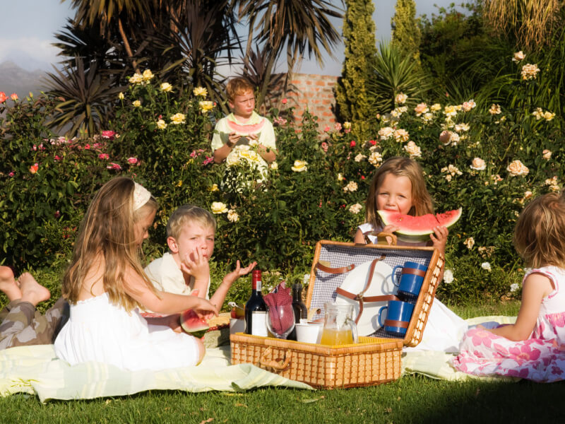 Lakeview restaurant winelands | picnic hampers | event venue | Le Bonheur adventures